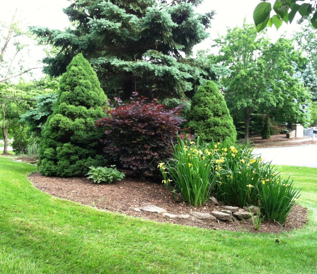 Curb appeal landscape solutions recent completed designs for Curb appeal landscaping